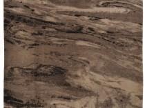 255261 CASSIDA MAMOREUS (NPL) 250x200